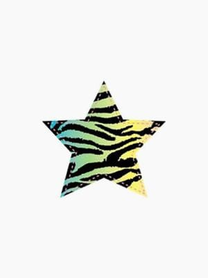 Plaid Fabric Iron On - Neon Zebra Star